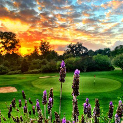 George Golf Club 4